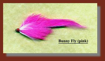 Bunny Fly (pink)